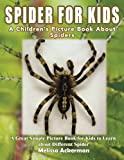 Spiders for Kids: A Children's Picture Book About Spiders: A Great Simple Picture Book for Kids to Learn about Different Spiders
