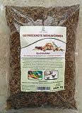 SHF-Natur Mehlwürmer getrocknet • 1kg • Fischfutter • Vogelfutter • Reptilienfutter • Schildkrötenfutter