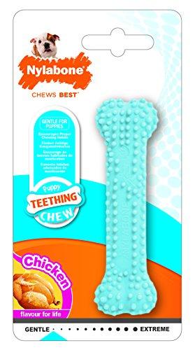 Interpet NBP901PEU Nylabone für Welpen, Kauspielzeug für den Zahnwechsel - blau, Hühnergeschmack, XS