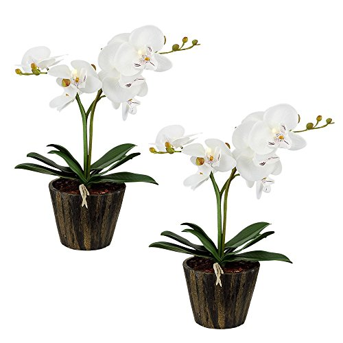 Kunstpflanze LED Orchideen