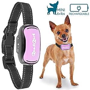 Petit Sans Choc Collier anti-aboiement de GoodBoy Rechargeable et étanche à l'eau dissuasion d'aboiements par vibration pour chiens petits et moyens 3Kg+ 12-48cm