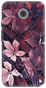 The Racoon Grip printed designer hard back mobile phone case cover for Moto X 2nd Gen. (leafy autu)