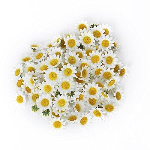 Asien Künstliche Sonnenblume Blume Hochzeit Craft Decor Gelb Weiß 100Stück