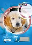 LANDRE 100050068 Schulheft 10er Pack A5 16 Blatt Lineatur 2