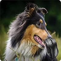 BGLKCS Mouse Pad Fabric Topped Rubber Backed Collie Intelligence Obedience Dog Puppy Canine