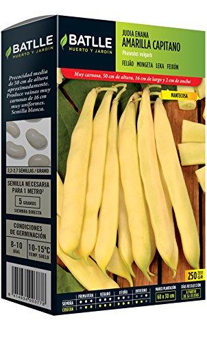 Semences horticoles de Batlle - Haricot nain jaune Capitaine (250g)