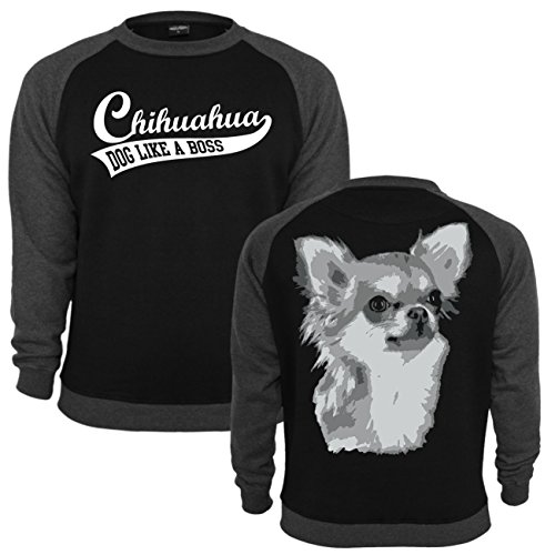 ... Männer und Herren Pullover Chihuahua Schwarz/Dunkelgrau ...