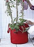Saco Veggie Bag para plantar tomates y otros cultivos. 36 x 35 cm.Color rojo
