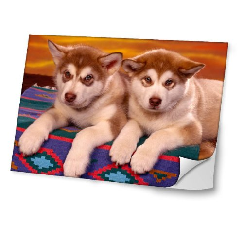 chiens-10022-husky-autocollant-vinyl-adhesif-dessin-colore-et-effet-de-cuir-pour-les-portable-tactil