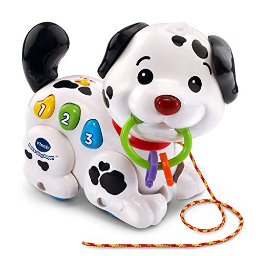 NiceButy électronique Pet Dog Walking Danse Chant Chasing et activités Fun Robot Jouet pour chien avec de la musique, des jouets interactifs et d'induction pour les enfants Cadeaux (noir) +