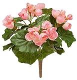 Miles Kimball Begonia Bush von oakridgetm Outdoor, Seide Polyester Plastik, Rose, Einheitsgröße