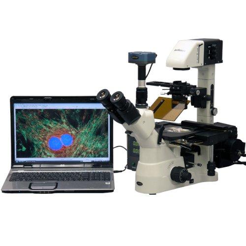 40x -1500x fase Inverted fluorescenza microscopio + 5MP CCD fluo