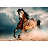 DIY 5D Full Drill Diamond Painting Rhinestone Embroidery Cross Stitch Arts Craft for Home Decoration Wild Horse 11.8 x 15.7 inches