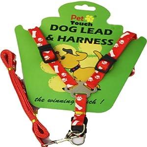 Small to Medium Dog Harness & Lead BLACK