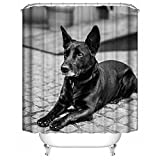HUIYIYANG Benutzerdefinierte Duschvorhang, 3D Design Cool Black Dog Black and White PrintingWasserdichter Anti Mehltau Gewebe Polyester Badezimmer Duschvorhang 60