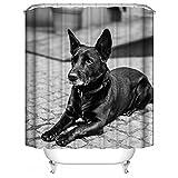 HUIYIYANG Benutzerdefinierte Duschvorhang, 3D Design Cool Black Dog Black and White PrintingWasserdichter Anti Mehltau Gewebe Polyester Badezimmer Duschvorhang 60
