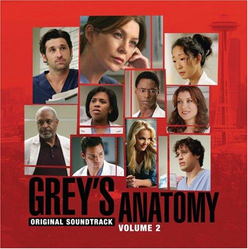 Grey's Anatomy Vol. 2