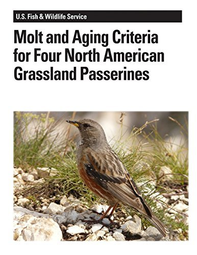 Molt and Aging Criteria for Four North American Grassland Passerines by Peter Pyle (2012-08-15)