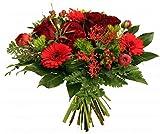 Blumenstrauß Lieferung | *Pure Liebe* | ROTE ROSEN XXL | TOP QUALITÄT | zum WUNSCHTERMIN Größe 30 Euro