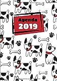 Agenda: Semainier - Grand Format A4 - Motifs Animaux Chien Blanc Noir Rouge - Calendrier Janvier à Décembre