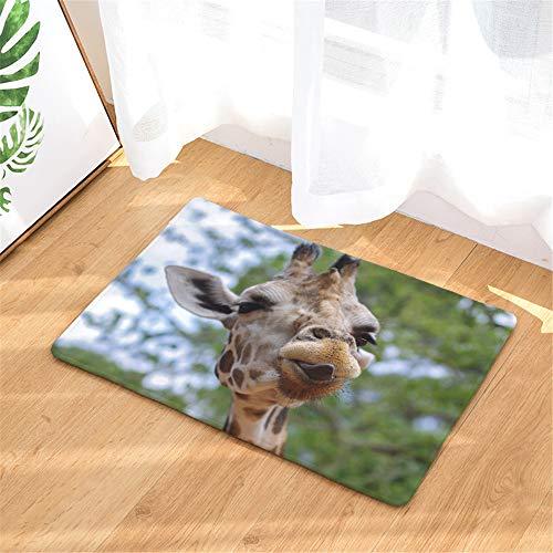 FEIYANG Tierdekoration Wilde Giraffe Bad Teppich Rutschfeste tür Matte Boden Eingang außen innen tür Matte Kinder Bad Matte 50x80CM Bad-Accessoires (Kinder Bad-matten)