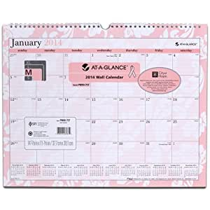 AT-A-GLANCE 2014 Sorbet Monthly Wall Calendar, 15 x 12 Inches (PM90-707)