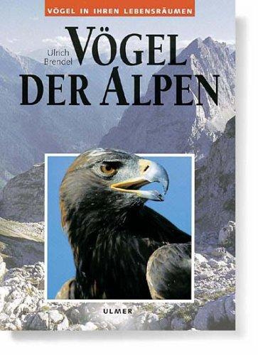 Download Vögel der Alpen