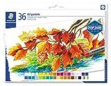 Staedtler Pastels à l'huile de qualité professionnelle, Pour dessin et peinture, Étui carton avec 36 couleurs intenses assorties, 2420 C36