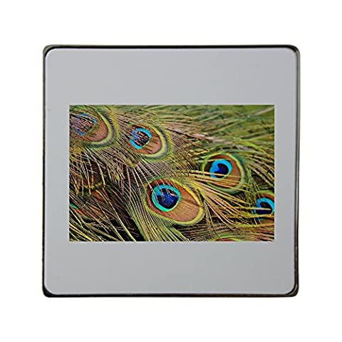 Peacock Feathers, Peacock, Bird, Poultry metal square fridge magnet