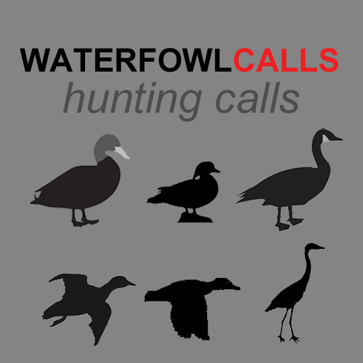 Waterfowl Calls App - The Ultimate Waterfowl Hunting Calls App For Ducks, Geese & Sandhill Cranes - BLUETOOTH COMPATIBLE -