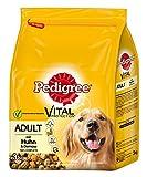 Pedigree Adult Hundefutter Huhn und Gemüse, 3 Beutel (3 x 3 kg)