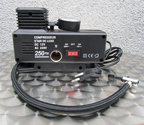 Kompressor Elektrische Luftpumpe Ballpumpe 220V & 12V Betrieb