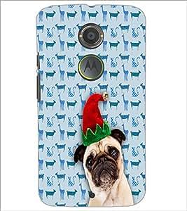 PrintDhaba Funny Dog D-3507 Back Case Cover for MOTOROLA MOTO X2 (Multi-Coloured)