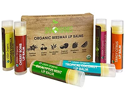 USDA Organic Lip Balm by Sky Organics - 6 Pack Assorted Flavors -- With Beeswax, Coconut Oil, Vitamin E. Best Lip Plumper Chapstick for Dry Lips- For Adults and Kids Lip Repair. Made In USA from Sky Organics