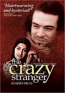 The Crazy Stranger (Gadjo Dilo) [DVD] [1998] [Region 1] [US Import] [NTSC]