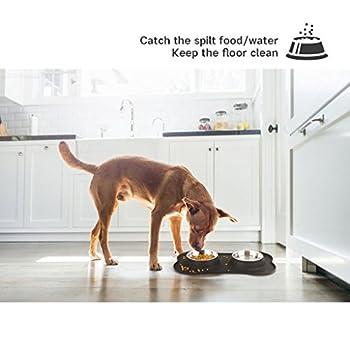 Double Bol en acier inoxydable dans un support en silicone en forme d'os, pour chien ou chat, Fournitures pour animaux de compagnie ou accessoires pour animaux de compagnie Cat Travel Feeder Pet Food Bowl Gamelles et distributeurs