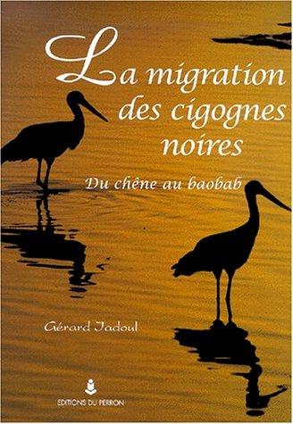Migration des cigognes noires par Gérard Jadoul