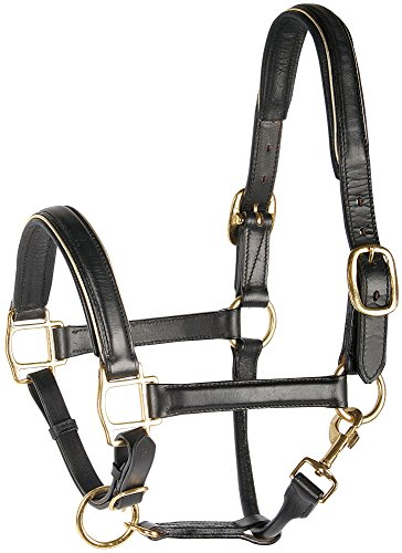 Harry\'s Horse 28500021-01full Lederhalfter, schwarz mit Paspel - Full, L, Gold