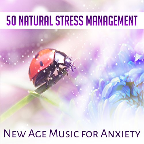 Natural Stress Management (Stress Natural)