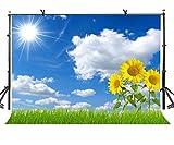 lylycty 7x 150Sunny Sky Hintergrund Sunshine Weiß Cloud Sonnenblume Fotografie Hintergrund Fotostudio Hintergrund Requisiten lynan391