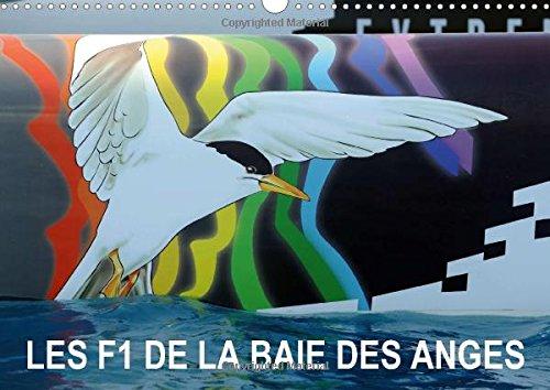 Les F1 de la Baie des Anges 2015: Nice a accueilli l'armada de l'Extreme Sailing Series en octobre 2011 et depuis, elle sillonne la Baie des Anges chaque annee.