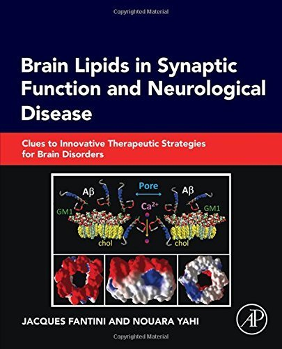Brain Lipids in Synaptic Function and Neurological Disease: Clues to Innovative Therapeutic Strategies for Brain Disorders by Jacques Fantini (2015-07-17)