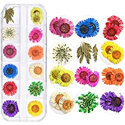 Laileya 1 Caja de decoración de uñas de Flores secas de Colores Gypsophila Margarita Cinco pétalos de Clavo Etiquetas engomadas DIY Crafts Uñas Decoración Decal