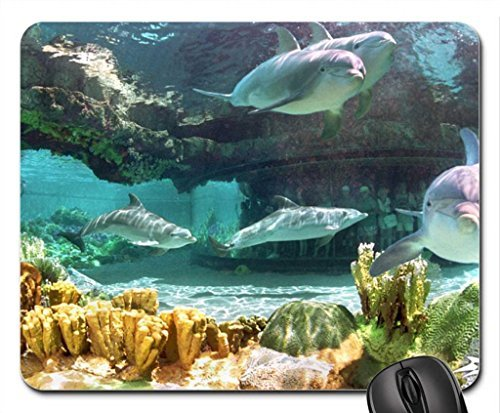 dolphins-at-sea-world-mouse-pad-mousepad-dolphins-mouse-pad
