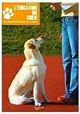 L' éducation du chien : pour apprendre les bases de la vie à la maison / Florence Desachy | Desachy, Florence. Auteur