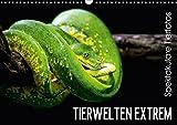 Tierwelten Extrem - Spektakuläre Tierfotos (Wandkalender 2017 DIN A3 quer): Der Tierkalender der Lust auf den nächsten Zoobesuch macht. (Monatskalender, 14 Seiten ) (CALVENDO Tiere)
