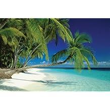 1art1 40778 Playas - Póster de una playa en las Maldivas (91 x 61 cm)