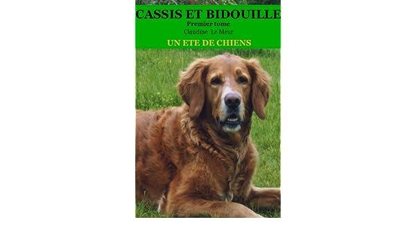 Un été de chiens: Le duo (Cassis et Bidouille t. 1) (French Edition)