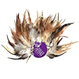 #10: AsianHobbyCrafts Natural Dyed Feathers : Size- multi : Color- Wild Hen : 80pcs
