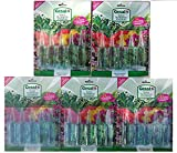 25 pezzi Fiale fertilizzante concentrato concime nutrimento rinverdente liquido gesal